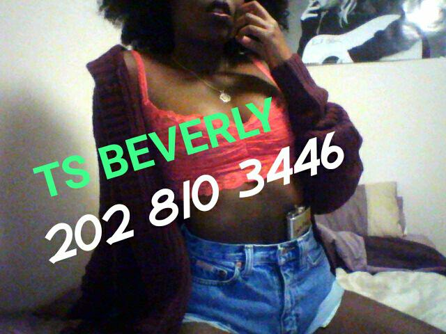 Escort 202-810-3446 San Francisco, SAN FRANCISCO AND BEYOND transx