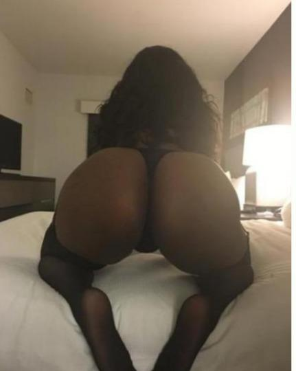 Escort 786-309-0284 Coming soon escortalligator